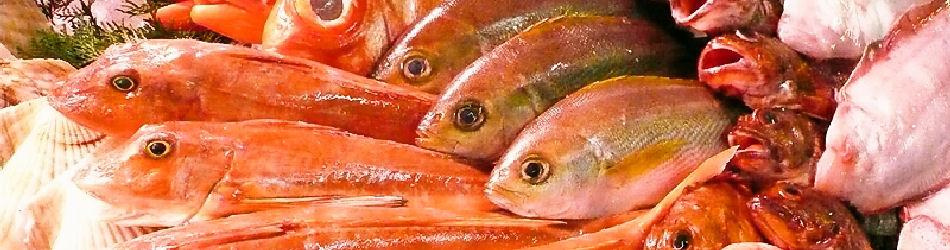 간사이의 신선한 생선이 모이는 구로 몬 시장에서